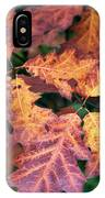 Fall Flames IPhone Case by Whitney Goodey