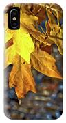 Fall Has Sprung IPhone Case