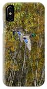 Fall Time Mallards IPhone Case