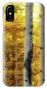 Fall's Visitation IPhone Case by Rick Furmanek