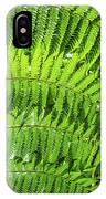 Fern IPhone Case by Nick Bywater