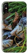 First Frost In Sweden IPhone Case