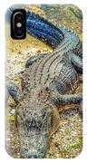 Florida Gator 2 IPhone Case