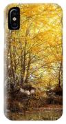 Golden Autumn Light IPhone Case