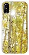 Golden Sunshine On An Autumn Day IPhone X Case