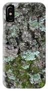 Gray Treefrog - 8522-2 IPhone Case