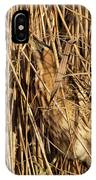 Great Bittern IPhone Case by Thomas Kallmeyer