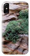 Growing From The Rock Terrain In Zion  IPhone Case