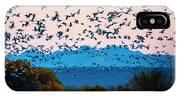 Herd Of Snow Geese In Flight, Soccoro IPhone X Case