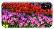 Hidden Garden Of Beautiful Tulips IPhone Case