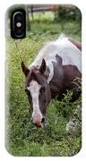 Horse Print 578 IPhone Case