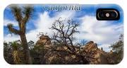 Joshua Tree National Park, California Box Canyon 02 IPhone Case