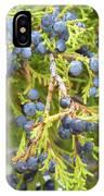 Juniper Berries IPhone Case
