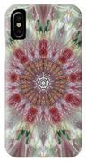 Kaleidoscope Valentine  IPhone Case