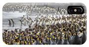 King Penguin Rookery At Salisbury IPhone X Case