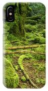 Landscape At Torc Waterfalls IPhone Case