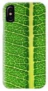 Leaf Veins IPhone Case by Jeff Phillippi