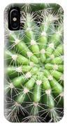 Macro Of Succulent Plant In The Desert IPhone Case