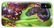 Madagascar Ground Boa Acrantophis IPhone X Case