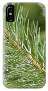 Moist Pine Tree Leaves With Water Droplets. IPhone Case