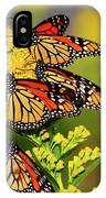Monarch Gathering 2 IPhone Case