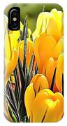 Naturalness And Flowers 56 IPhone Case