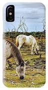 New Forest Ponies On The Heath IPhone Case