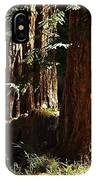 New Growth Redwoods IPhone Case