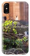 Night Heron At The Palace IPhone Case by Kate Brown