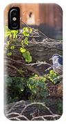 Night Heron At The Palace Revisited IPhone Case by Kate Brown