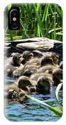 Proud Mother Duck IPhone Case
