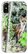 Red Fox In The Woods IPhone Case