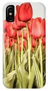 Red Tulip Field In Portrait Format. IPhone Case by Anjo Ten Kate