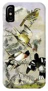Rose-breasted Grosbeak IPhone X Case