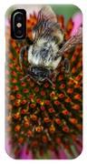 Rudbeckia Coneflower With Bee, Canada IPhone Case