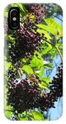 Sambucus Elderberry Sureau IPhone Case