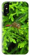 Scarlet Darter Male Dragonfly IPhone Case