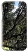 Secular Tree IPhone Case