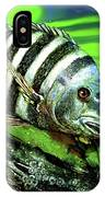 Sheepshead Lunch IPhone Case