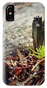 Small Spruce Growing On An Old Tree Stump IPhone Case