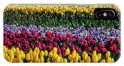 Spectacular Rows Of Colorful Tulips IPhone Case