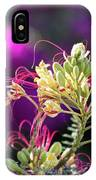 Stream Of Colored Highlights Leads To Yellow Bird Of Paradise IPhone Case