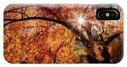 Sun Peaking Through The Autumn Colors  IPhone Case