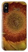 Sunflower Splendor IPhone Case by Judy Hall-Folde