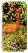 The Flamingo IPhone Case