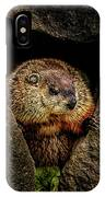The Groundhog IPhone Case by Bob Orsillo