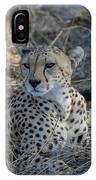 Cheetah In Repose IPhone Case by Thomas Kallmeyer
