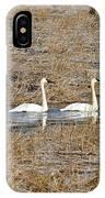 Three Trumpetor Swans 0629 IPhone Case