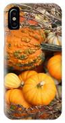 Time For Fall IPhone Case