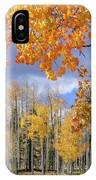 Touch Of Fall IPhone X Case